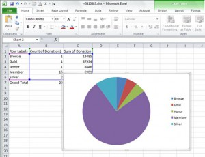 Fred Pryor Seminars_Add_Title_to_Excel_Chart_figure1