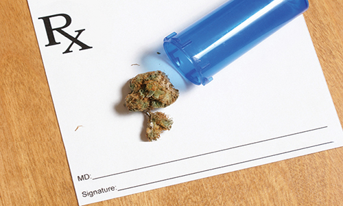 Medical Marijuana in the Workplace: HR Policies & Guidelines
